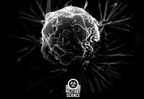 ALIENSEXTOY enterin nebula zero EP underground electro review New release on MILITANT SICENCE : « Enterin Nebula Zero » EP by ALI3NS3XTOY  music reviews blog
